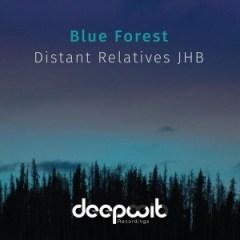 Distant Relatives JHB - Blue Forest (Original Mix)